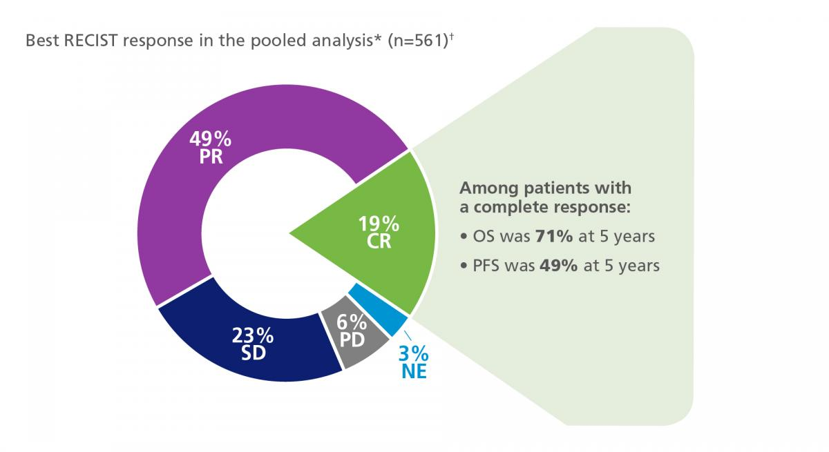 Diagram showing patient response to treatment in the pooled COMBI-v/d trials