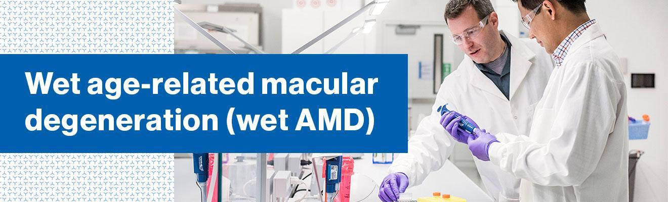 Top banner. Wet age-related macular degeneration (wet AMD)