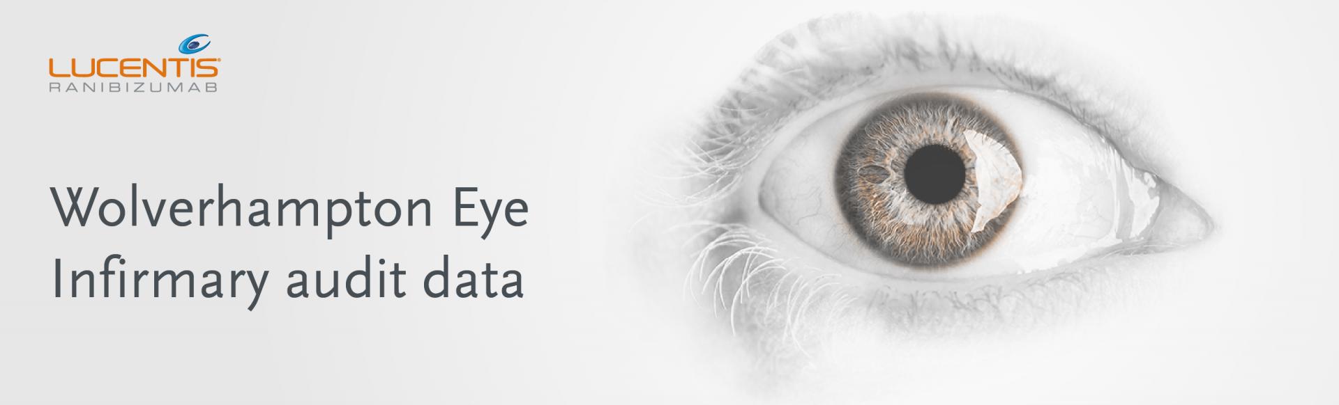 Top banner. Wolverhampton Eye Infirmary audit data