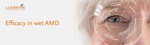Top banner. Efficacy in wet AMD